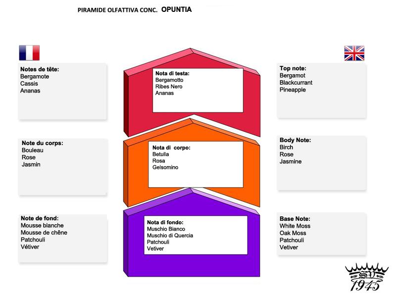 """Saponifico Varesino """"Opuntia"""" (Cactus) Piramide-olfattiva-opuntia-soap-jpg"""