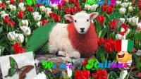 Italian Sheep.jpg