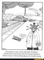 dog translator.jpg