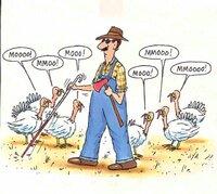 thanksgiving-moo.jpg