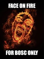 Face on Fire For BOSC only (meme).jpg