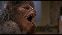 an_american_werewolf_in_london_john_landis_sequel.jpg