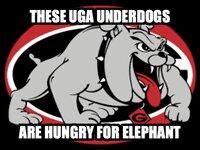 Dawgs hungry for elepant.jpg