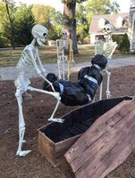 Skeltons .jpeg