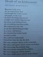 Death of an Irishwoman.jpg