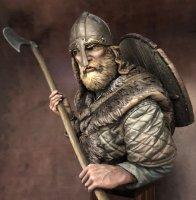 final_alternative-viking-fagerberg-002-cropped__sized.jpg